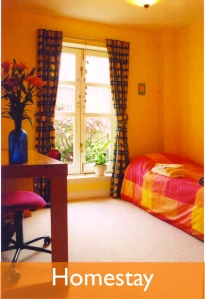 homestay icon bigger